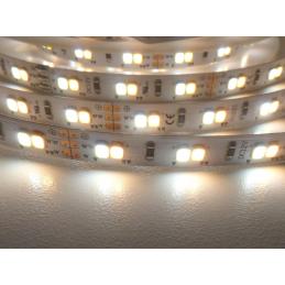 LED pásek CCT CCT18W12V